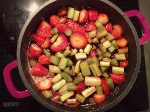 erdbeerundrharbarber3